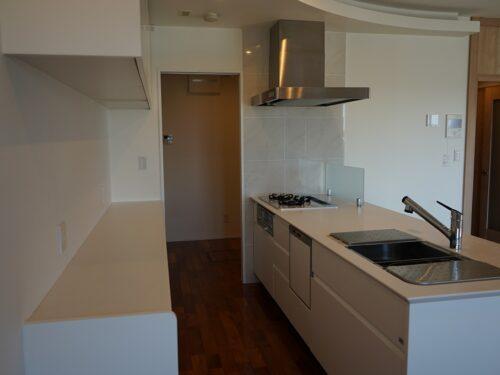人工大理石キッチン、食器洗浄乾燥機完備(キッチン)